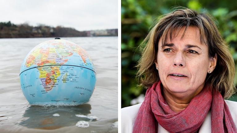 Klimatminister Isabella Lövin vill att Sverige ska snabbare godkänna globala klimatavtalet
