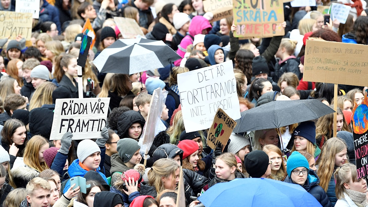 Demonstranter samlas på Segels Torg i Stockholm.