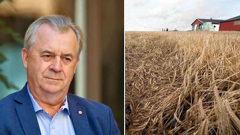 وزير الزراعة السويدي سفين إيريك باشت