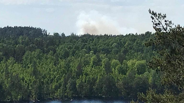 Rökmoln ovanför skogen vid Algunnen