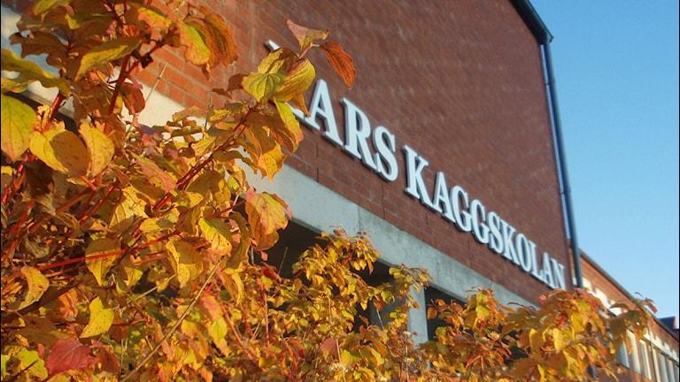 Lars Kaggskolans fasad med träd framför
