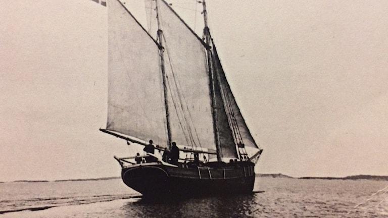 Segelskute med fulla segel