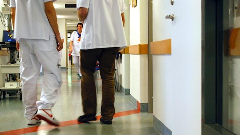 Sjuksköterskor i en korridor. Foto: Karin Hellzén/Sveriges Radio