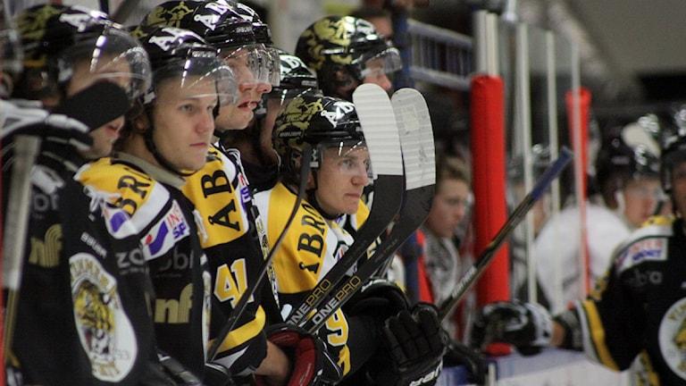 Spelare från Vimmerby hockey stående i båset.