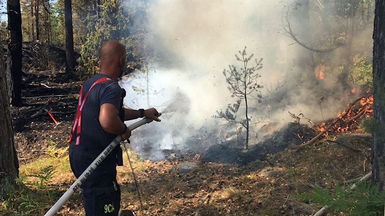 Brandman bekämpar skogsbrand nära Hjorted.