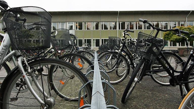 Cykelställ. Foto: Nick Näslund/Sveriges Radio.