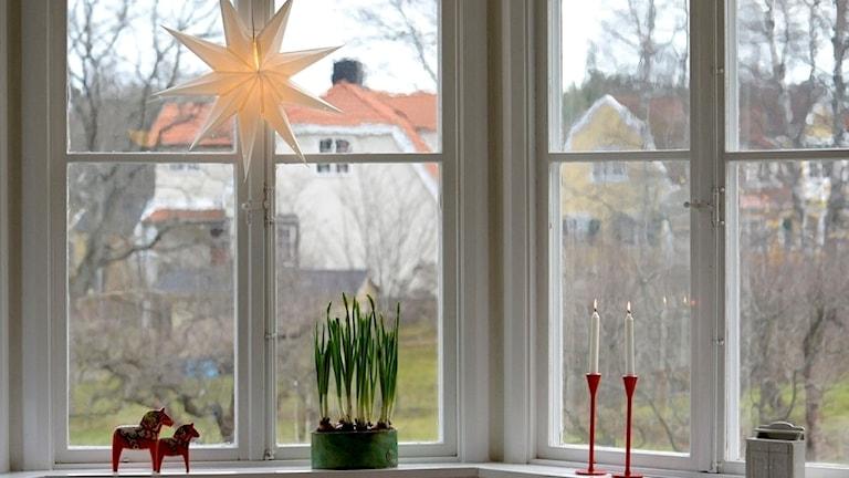 fönster jul.