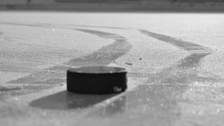 Puck på is. Foto: Sveriges Radio.
