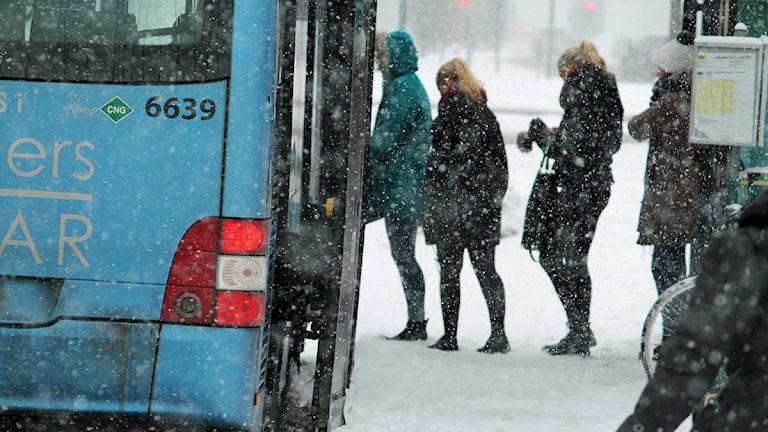 Buss. Foto: Nick Näslund/Sveriges Radio.