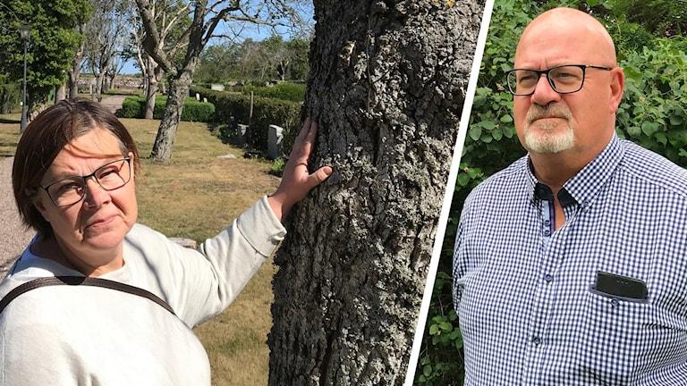 En person står vid ett träd och en person står framför en buske.