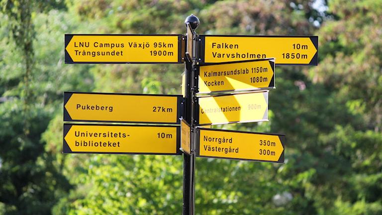 Vägvisare. Foto: Nick Näslund/Sveriges Radio.