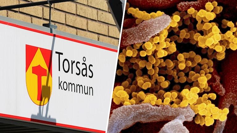 """En skylt där det står """"Torsås kommun"""" samt en närbild på ett virus."""