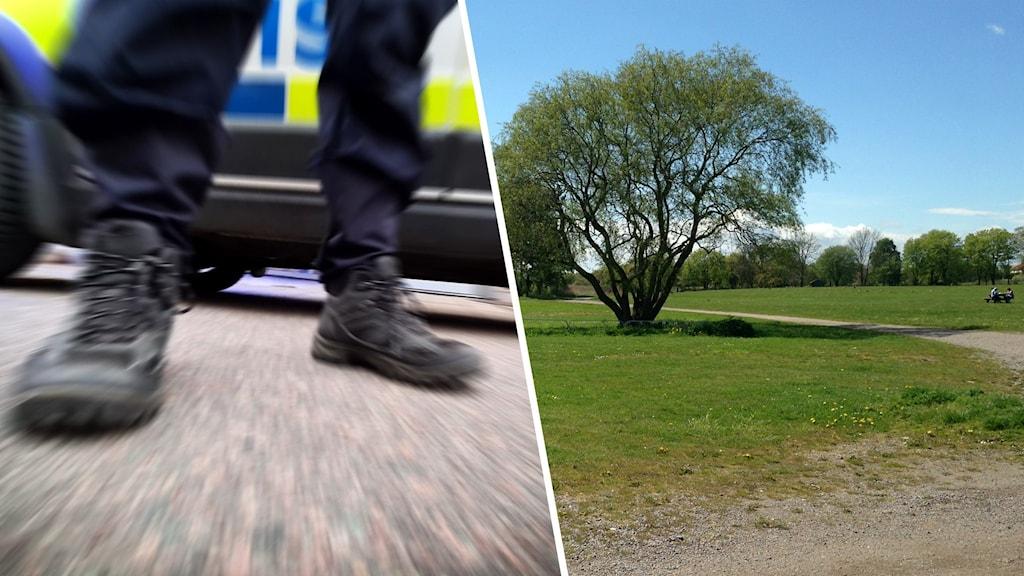 Bild på polis och bil på park.