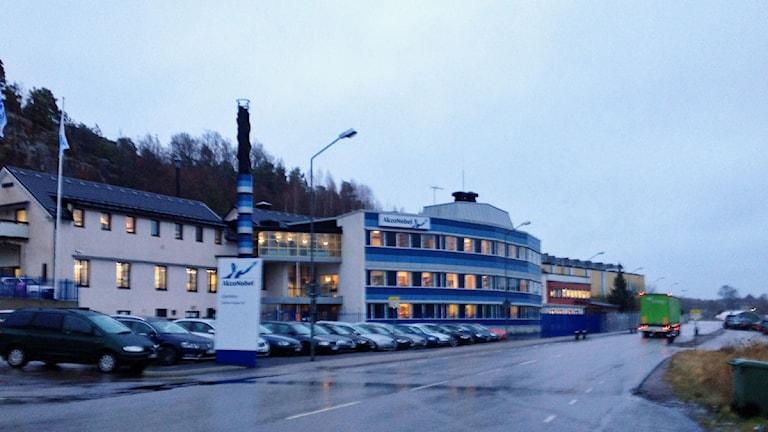 Akzo Nobel. Foto: Johanna Lindblad Ahl/Sveriges Radio