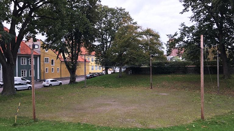 Gräsområde omgivet av träd och hus.