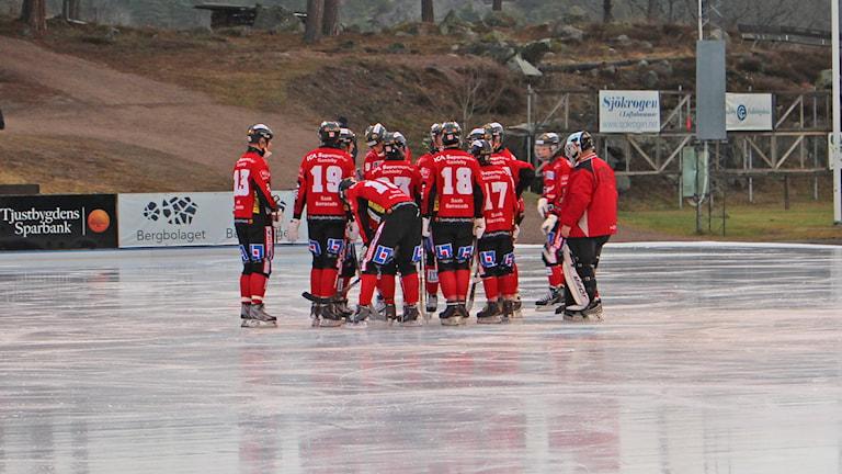 Bandyspelare på is. Foto: Patrik Wirengård/Sveriges Radio