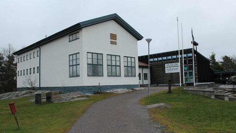 Västerviks museum och Naturum. Foto: Johanna Lindblad Ahl/Sveriges Radio