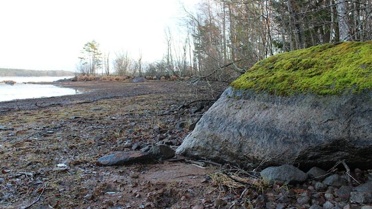 På en bild som Tino Åberg tog innan snön kom visar tydligt var vattennivån brukar vara i sjön.