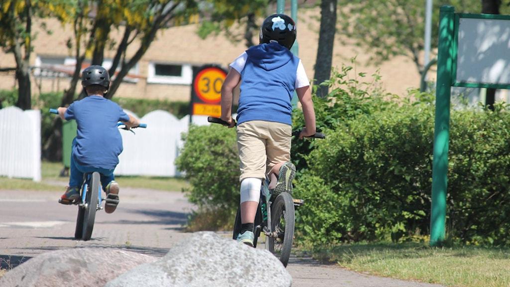 Barn på cyklar. Foto: Nick Näslund/Sveriges Radio