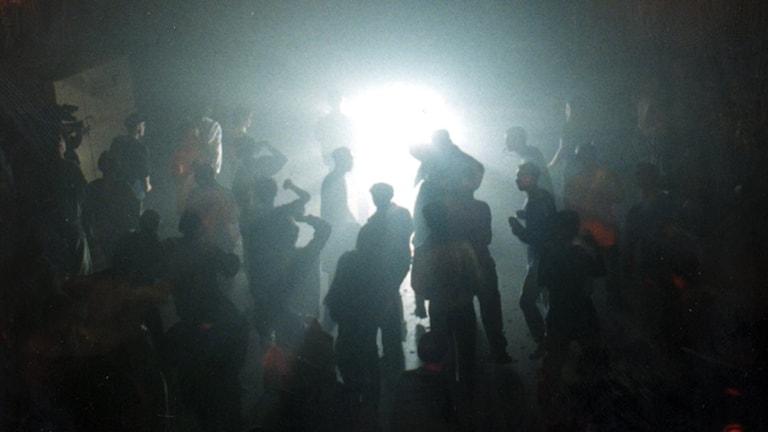 Ravefest. Foto: Fredrik Sandberg/TT