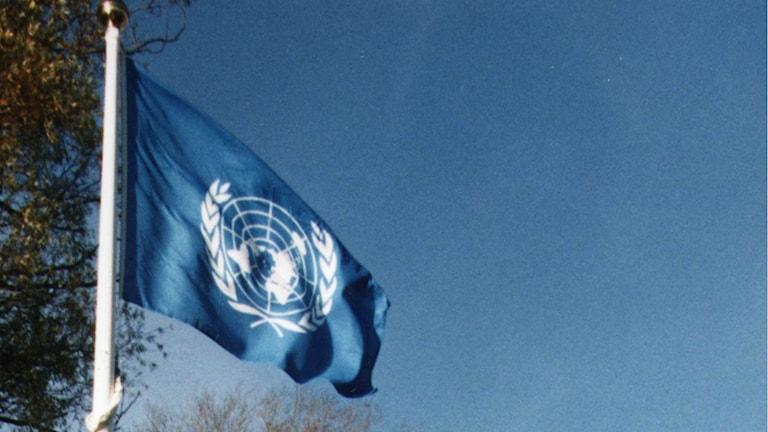 En FN-flagga. Foto: Ola Torkelsson/TT