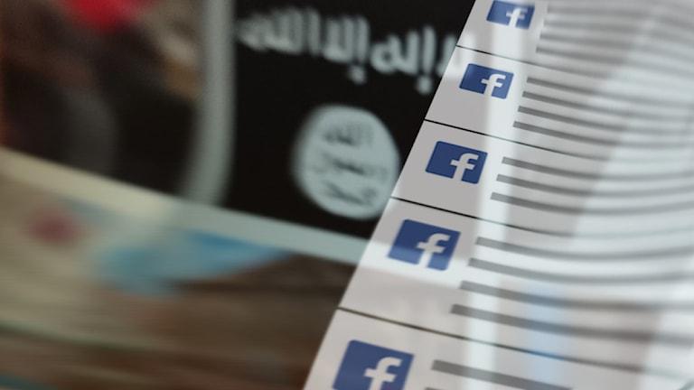 Isis på nätet. Foto/illustration: Nick Näslund/Sveriges Radio