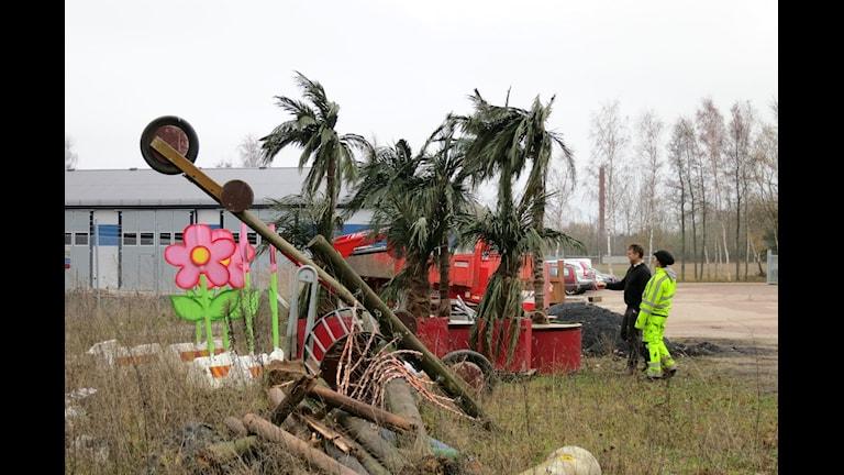 Konstgjorda palmer från hamnen i Färjestaden. Varför ställer vi ut dem? Foto: Johanna Karlin