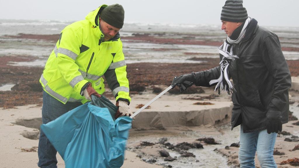 Två män plockar paraffinklumpar från stranden. Foto: Tobias Sandblad/Sveriges Radio