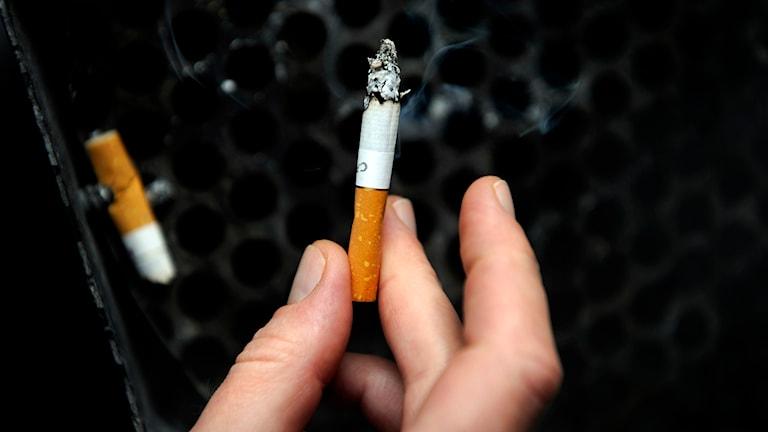 Cigarett. Foto: Erik Mårtensson/TT