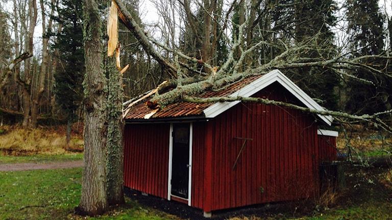 Lars Sjöstströms garage i söndags morse, efter att stormen Egon dragit fram.