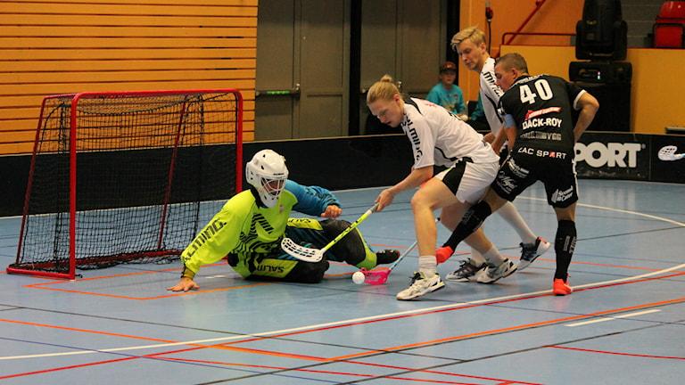 Kalmarsund tog emot Höllviken i Kalmar Sporthall. Foto: Viola Lindberg/Sveriges Radio.