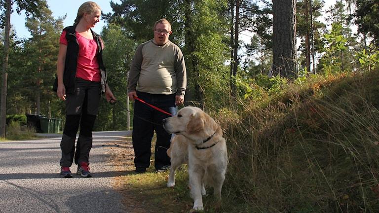 Hund på promenad. Foto: Leif Johansson/Sveriges Radio