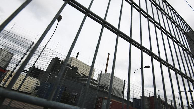 Kernkraftwerk Oskarshamn in Schweden am Kalmarsund  Foto: Nick Näslund/Sveriges Radio