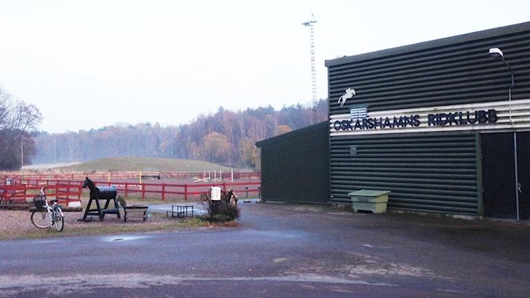 Oskarshamns ridklubb. Foto: Janne Rindstig/Sveriges Radio