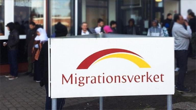 Migrationsverkets kontor. Foto: Peter Bressler/Sveriges Radio