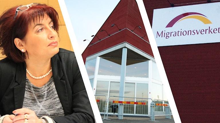 Dzenita Abaza, entré till boende och Migrationsverkets logotyp. Foto: Sveriges Radio