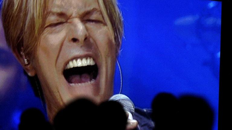 David Bowie. Foto: Mats Andersson/TT