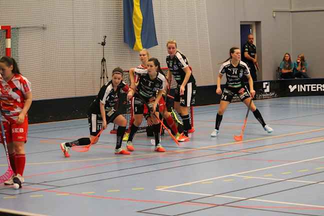 FBC Kalmarsund vann över Pixbo Wallenstam IBF med 3-1 i Färjehallen. Foto: Viola Lindberg/Sveriges radio.