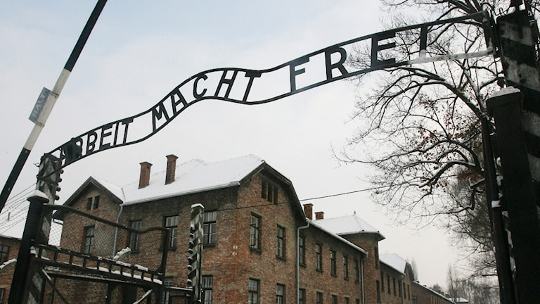 Huvudentren till Auschwitz. Arbeit Macht Frei. Foto: TT
