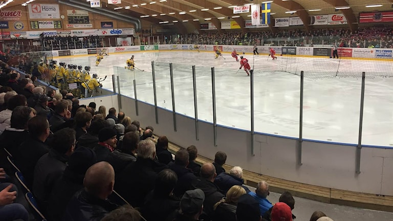 Ishall, publik och hockeyspelare.