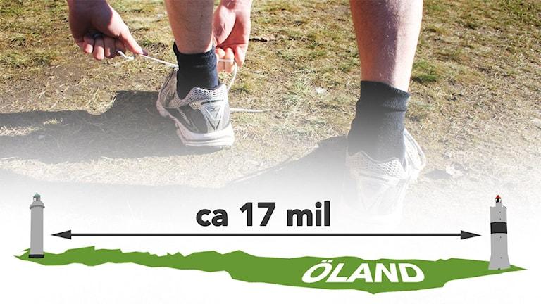 Grafik: Cirka 17 mil mellan fyrerna på Öland.