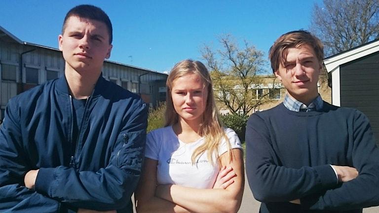 Tom Josefsson, Sanna Holm Wertwein, Erik Porcile.