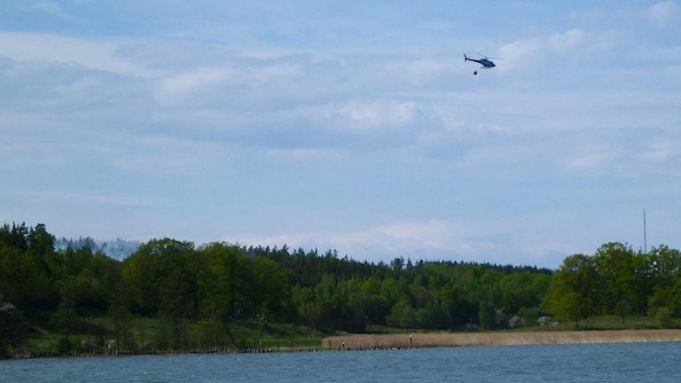 Helikopter hämtar vatten.