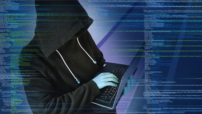 Person med huvtröja med laptop.