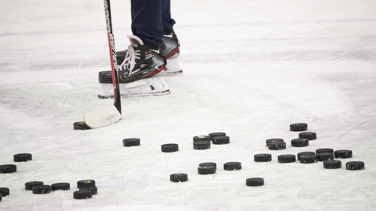 Hockeypuckar.