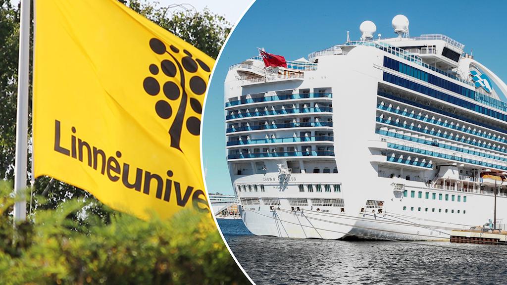 Linnéuniversitetets flagga och kryssningsfartyg.