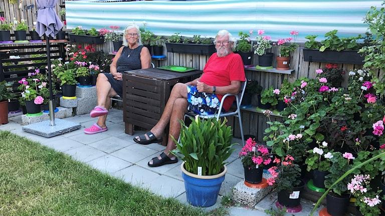 Två personer sitter i en trädgård.