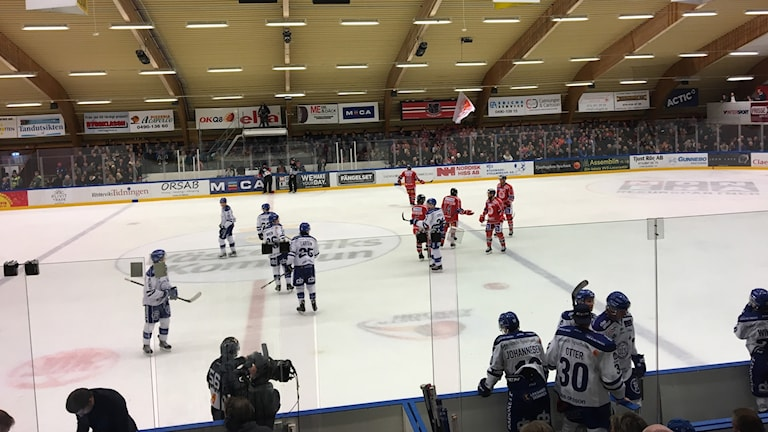Spelare i Västerviks IK och Leksands IF.