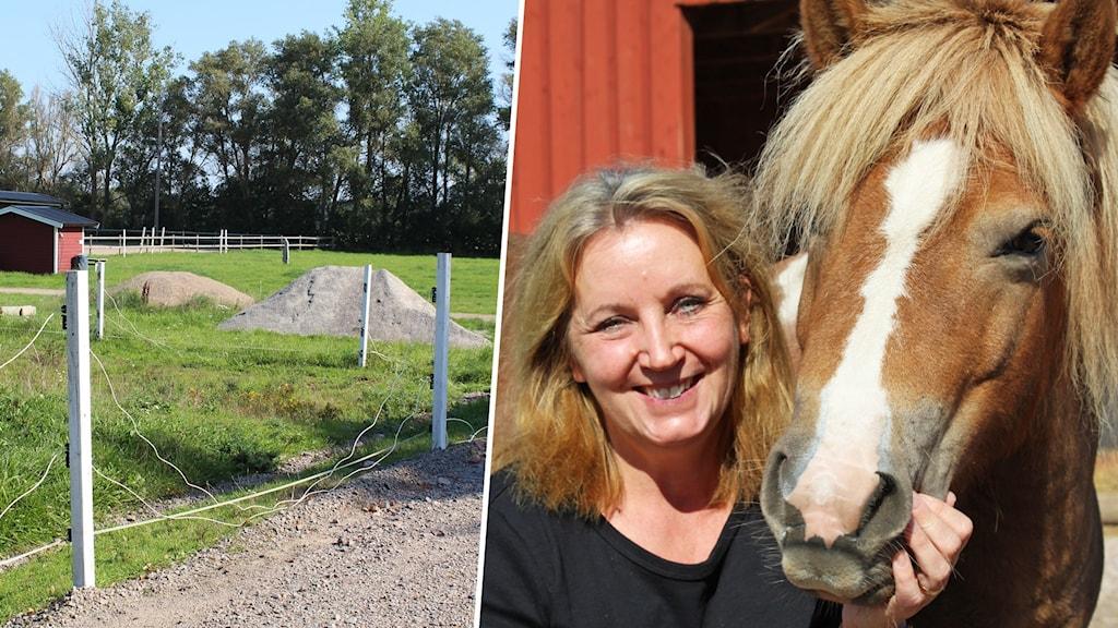 En hage och en kvinna och en häst.