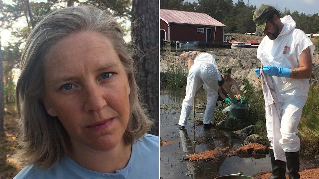 Fotomontage miljöminister Karolina Skog och hemvärnet som sanerar olja
